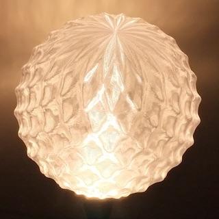 bulb405_7511s.jpg